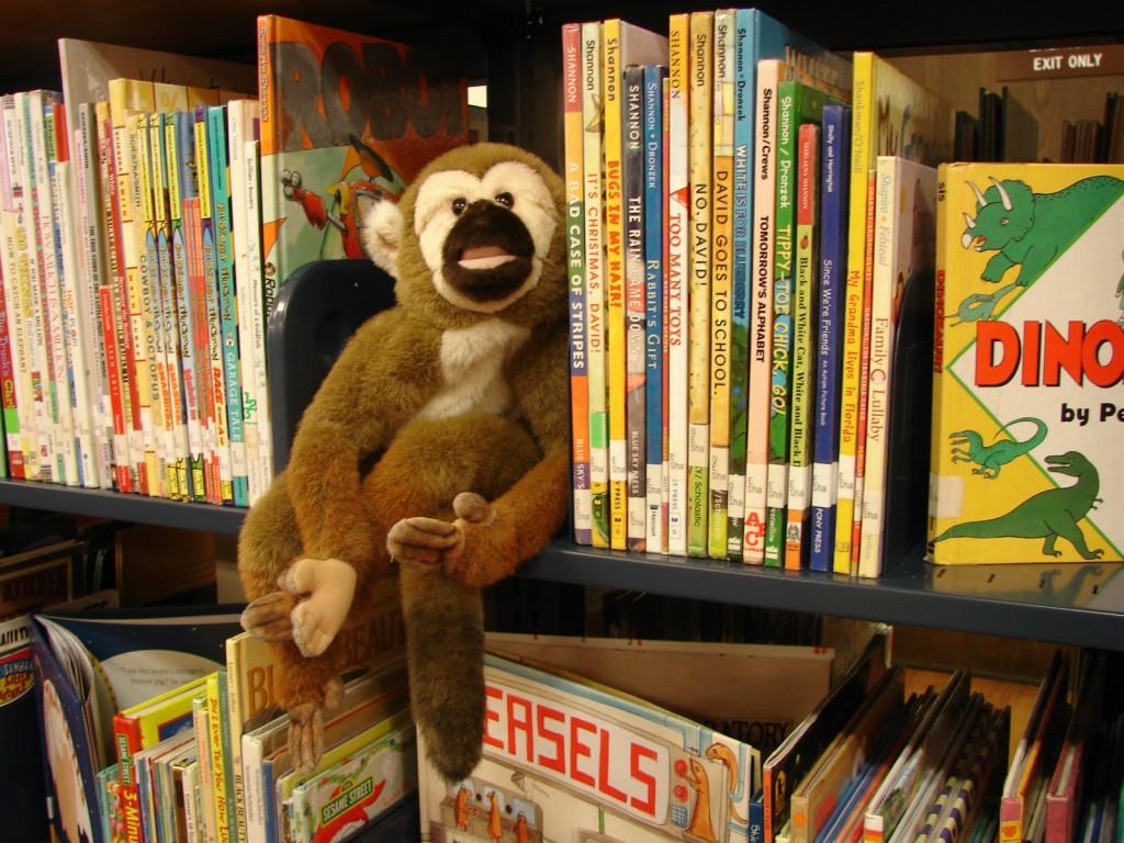 Image - Library Shelf with Monkey